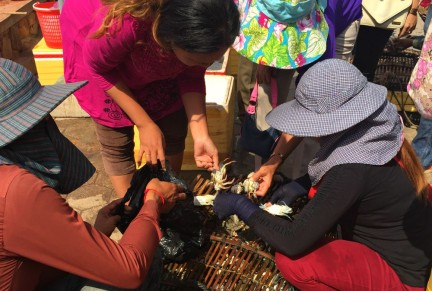 Crab Market in Kep Cambodia